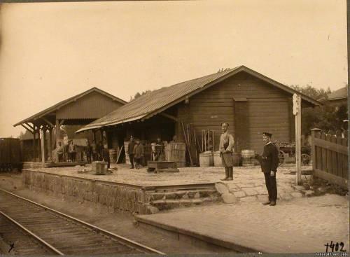 Станция Струги-Белая Лужского уезда.