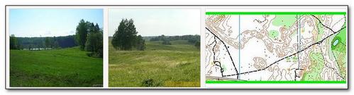 перспективных рисунок рельефа псковской области базы